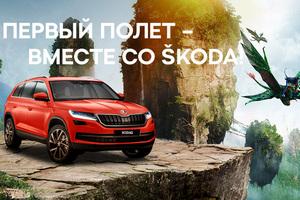 Цена страховки автомобиля в беларуси
